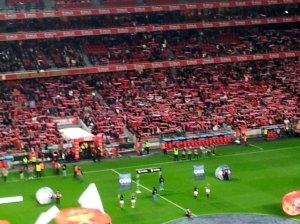 Se så många Benfica-fans!
